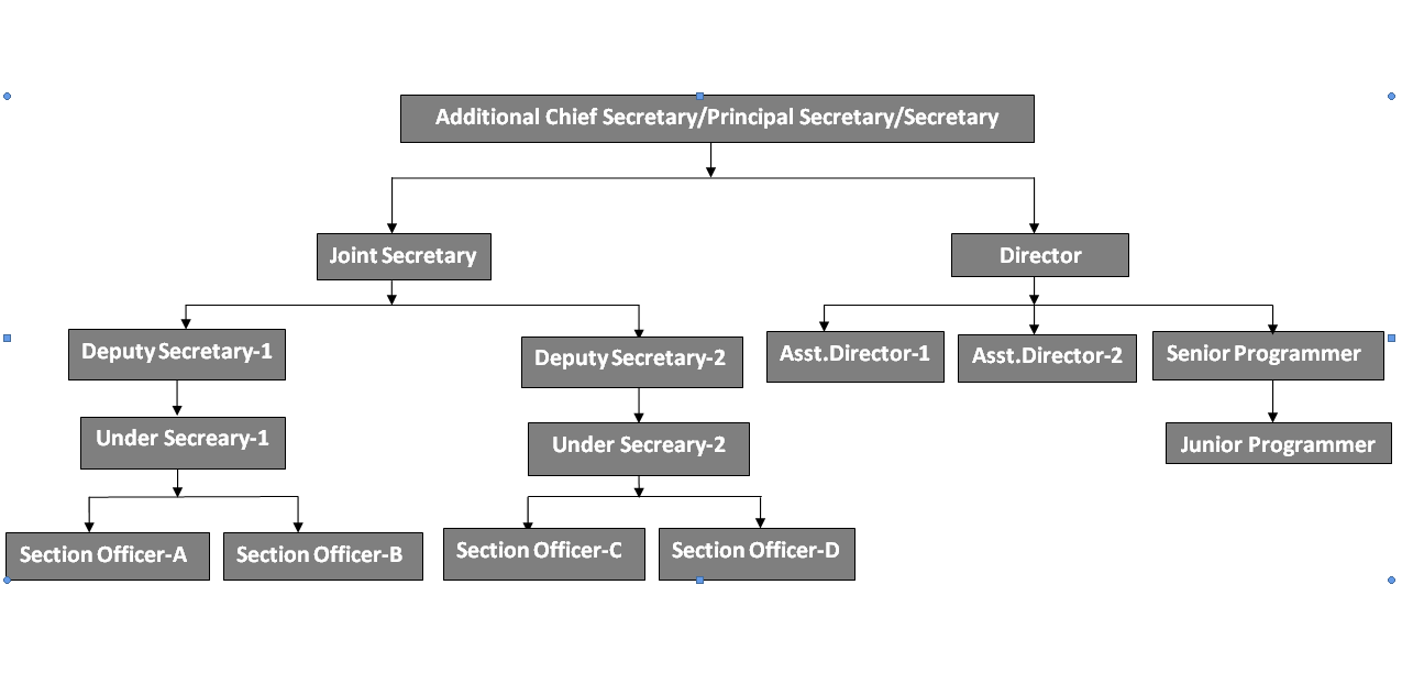 organisation chart english